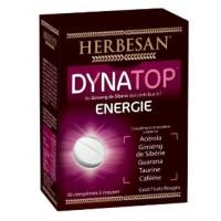 Dynatop Energie