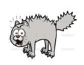 chat, peur, poil hérissé, sursaut, dessin